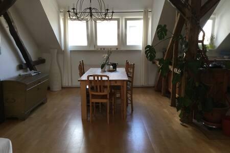 Zimmer in schöner Altbauwohnung - Hildesheim - Apartment