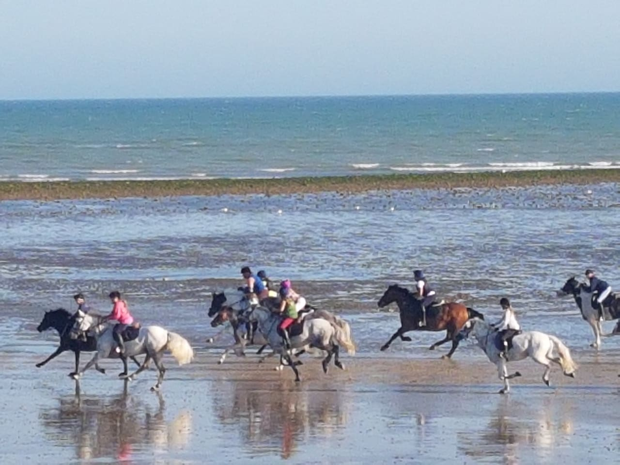 Horses on East Preston Beach