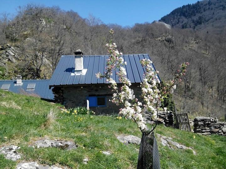 Charme authentique d'une cabane de berger