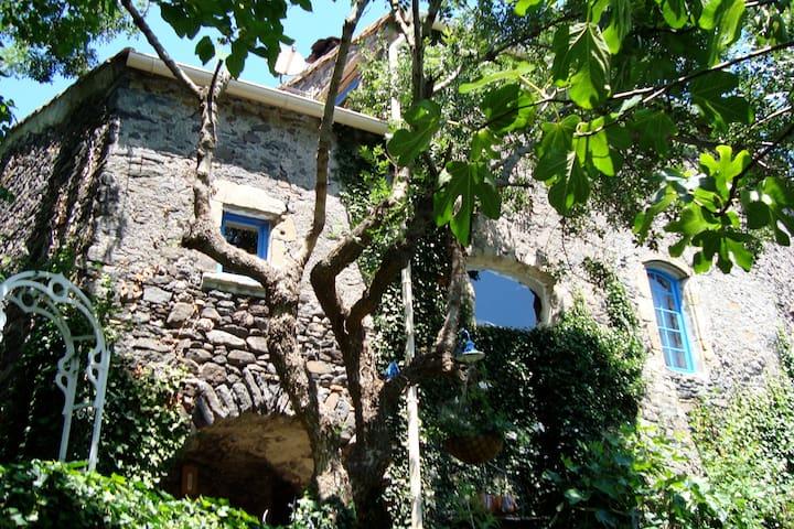 6 persoons landhuis met zwembad - Pézènes-les-Mines - Huis