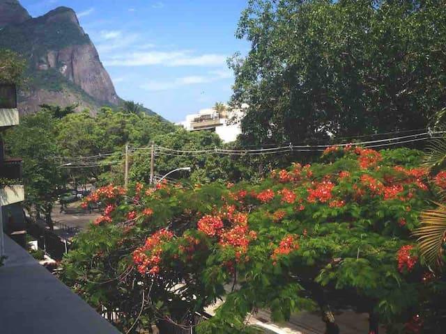 Andrew's Apt. (Barra da Tijuca / Jardim Oceânico)