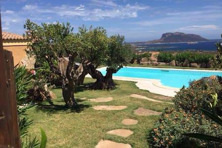 Depandance con giardino vista mare - Golfo Aranci - Villa