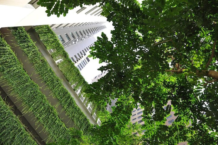 ChipHouse - 2br+1Friendly apartment near Hanoi uni
