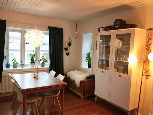 Cozy apartment in the heart of Thorshavn