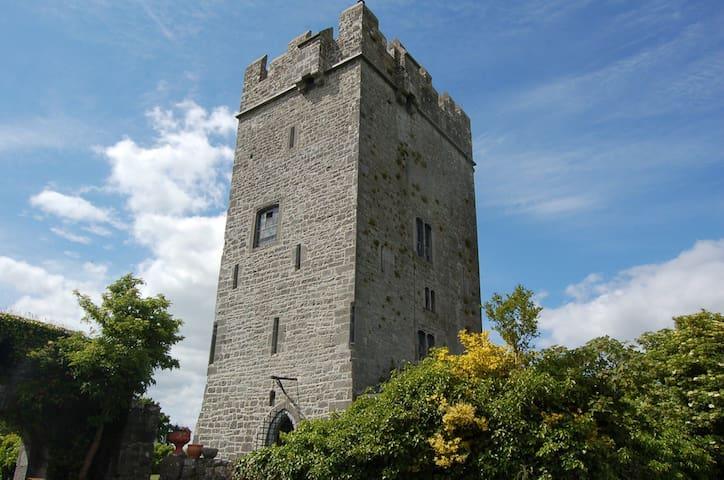 Ballyhannon Castle, Quin, Clare - Quin - Schloss