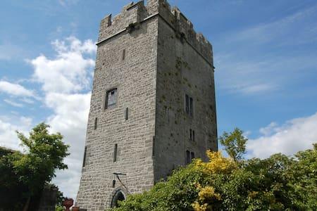 Ballyhannon Castle, Quin, Clare - Quin