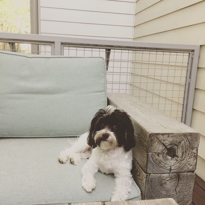 My dog loves to chill on the patio :)