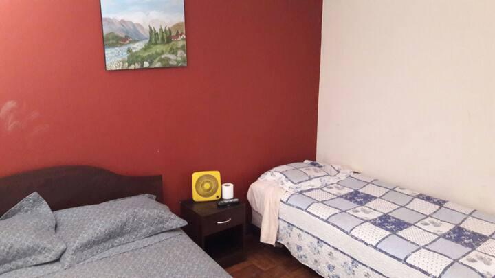 Dormitorio amplio y acogedor.centro curico.