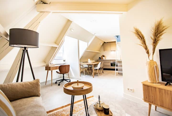 Luxury Loft nr 3 in the heart of Maastricht