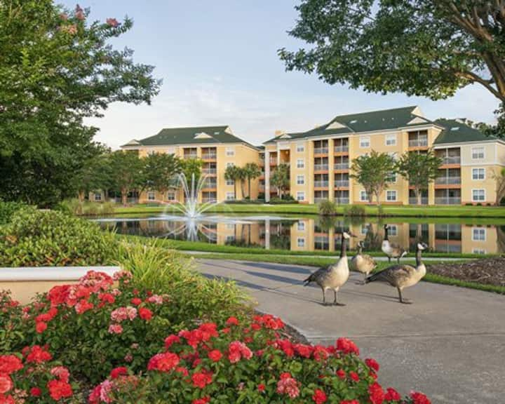 1BR/1B Sheraton Broadway Plantation (Sleeps 4)