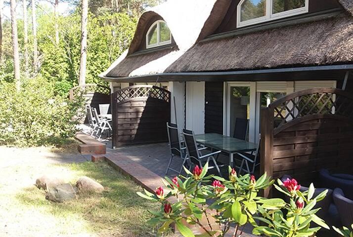 Usedomain - Reetdachhaus R2