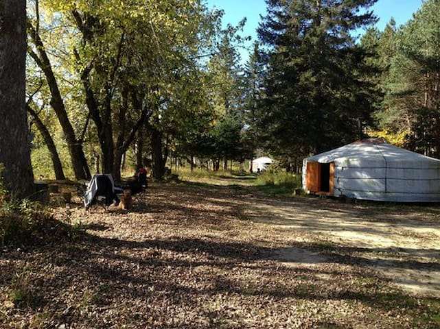 Yourte de Mongolie - Rivière-Rouge - Yurt