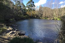 Frank Smith dam, 200 metres from the back garden.