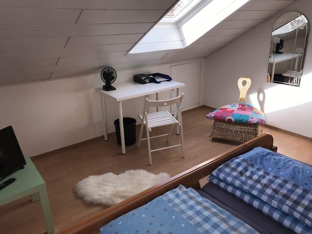 1 hübsches Dachgeschosszimmer(2.optional), zentral - Würzburg - House