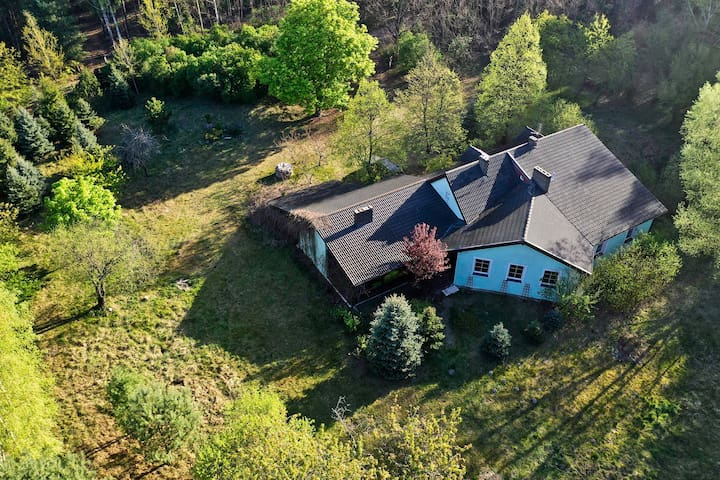 Dom na uboczu otoczony lasem