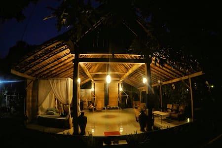 Didu's Homestay bed&bfast pondok 2 - Banyuwangi - Talo