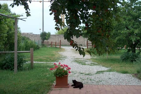 B&B in the countryside near Verona - Villafranca di Verona - B&B/民宿/ペンション
