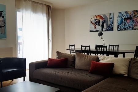 Spacious & calm 2 bedroom flat - Veyrier - Apartament