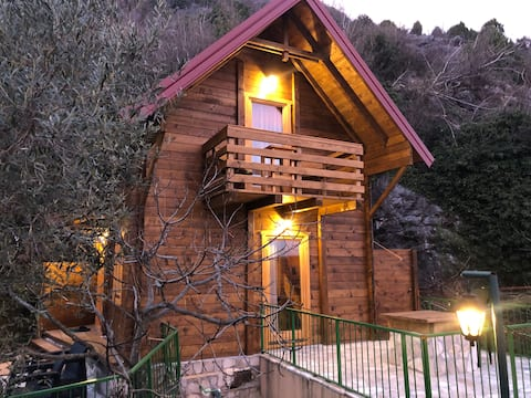 Wooden cottage Pajovic