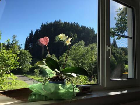 Schwarzwald direkt vor der Tür in idyllischer Lage
