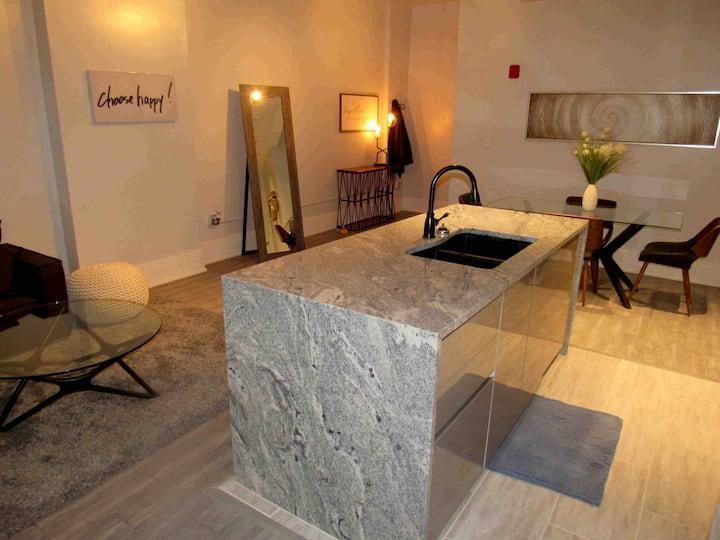 New Remodel: Luxury Apt In the Heart  Of Cincy