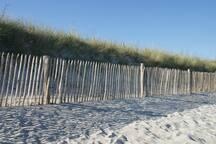 En se promenant sur la plage de Ste Marine