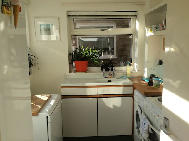 Cambridge garden flat - lower price