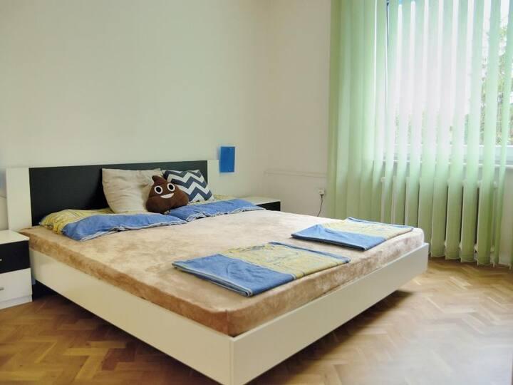 The spacious & sunny apartment near city centre