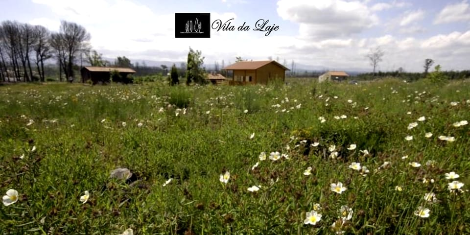 Vila da Laje-Estrela House T2 - Serra da Estrela
