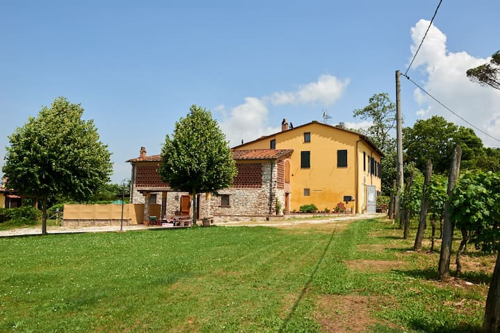 Rustic apartment 3 km from Lucca
