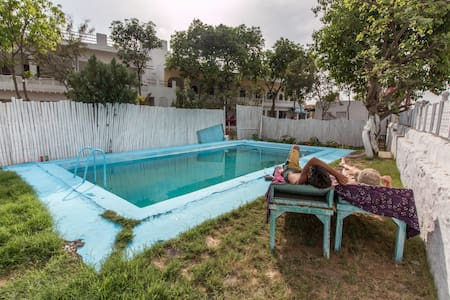 Backpacker Panda Chand Palace-Superior Private - Pushkar - Hostel