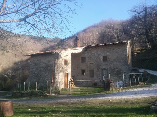 Mimmo Holiday House Florence counrtyside Tuscany.
