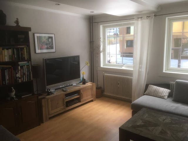 Fully equipped apartment in Hamar City Center - Hamar
