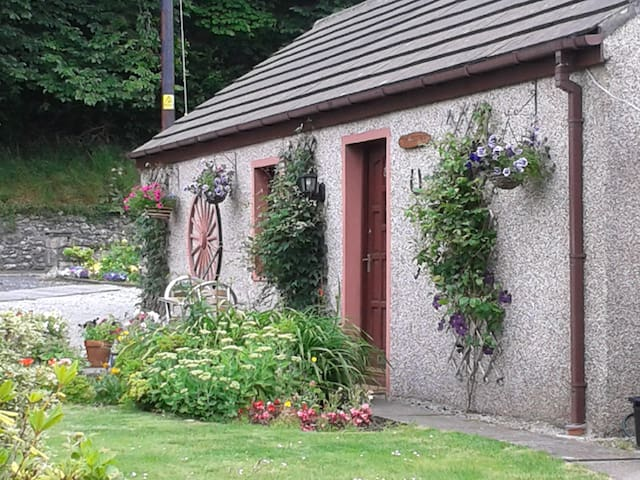STONE COTTAGE - Dumfries and Galloway - Vakantiewoning