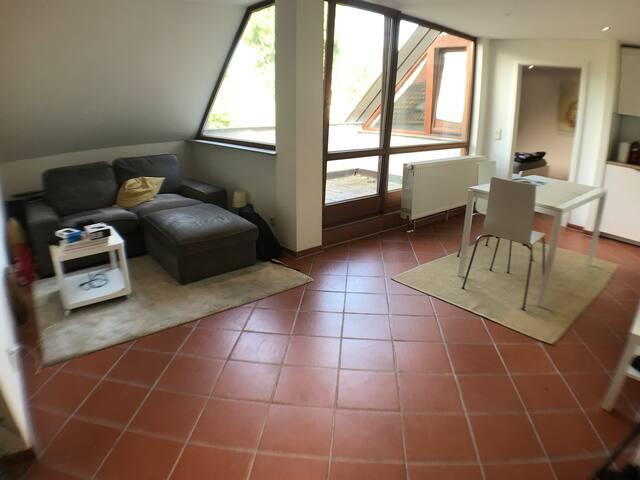 Schöne Helle 2 Zimmer-Wohnung mit Dachterasse