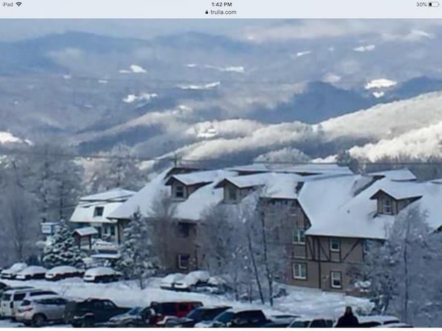 Mountain Laurel Condo