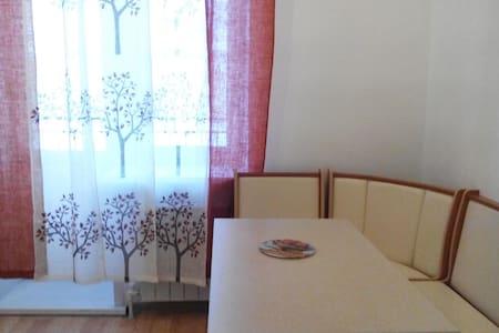 Уютная Квартира в центре города - Kostroma - Wohnung