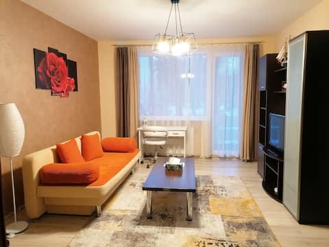 Apartamento acogedor Targu Mures