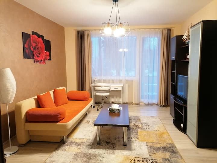 Friendly apartment Targu Mures
