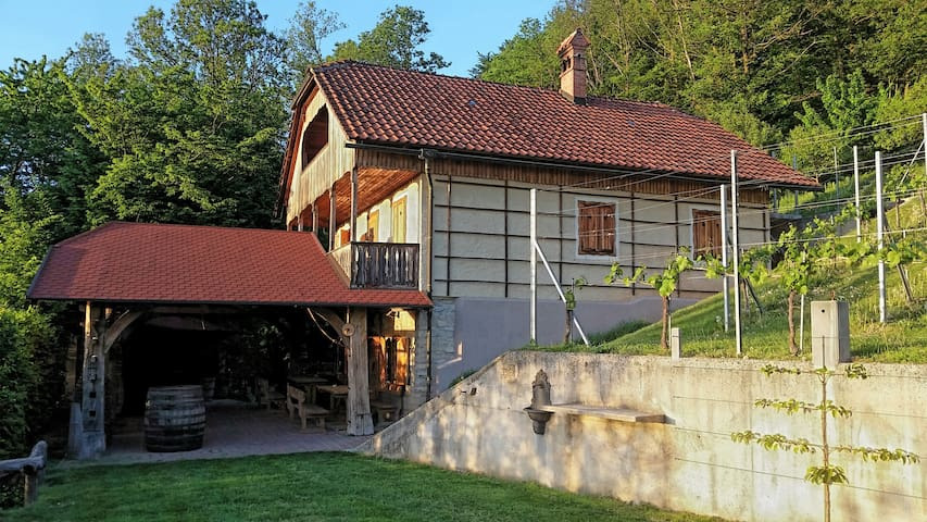Vineyard cottage Rangus - Šentjernej - 獨棟