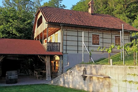 Vineyard cottage Rangus - Šentjernej