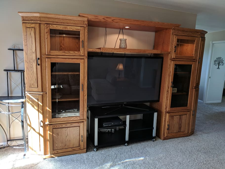 Entertainment Center in Shared Space