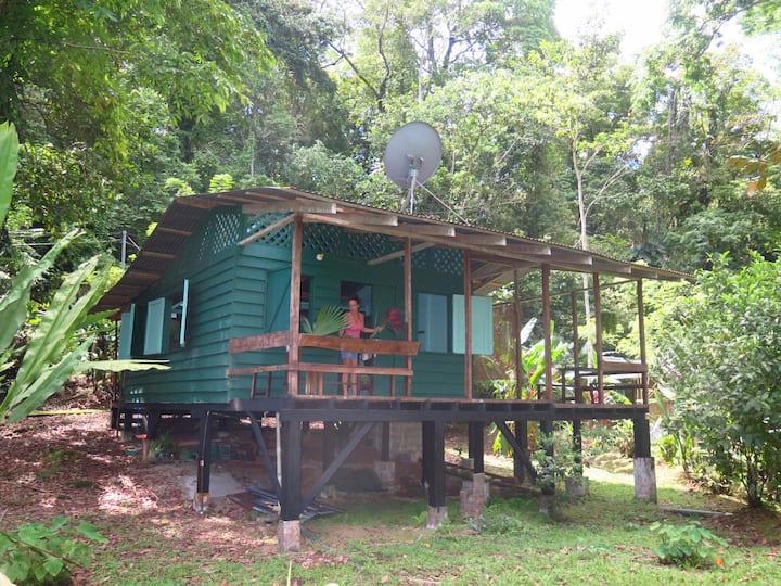 casita en la jungla de puerto viejo