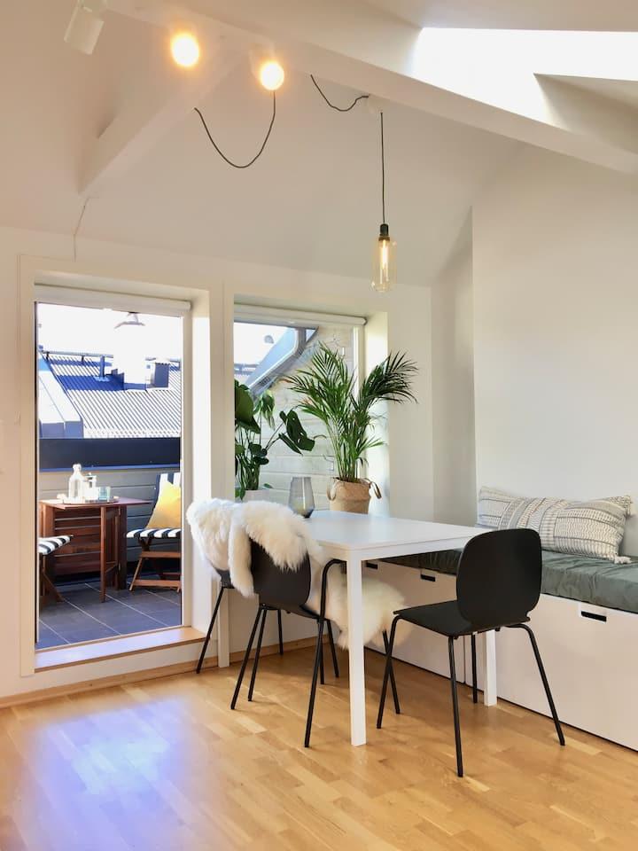 Private apartment with balcony Oslo/Grünerløkka