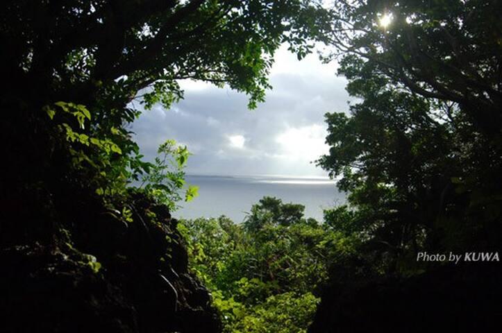 神々と琉球王朝のロマンを訪ねて……「ロンバケ沖縄」