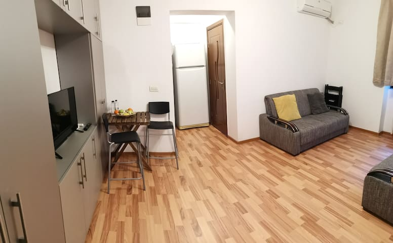 Transalpina Apartment 1