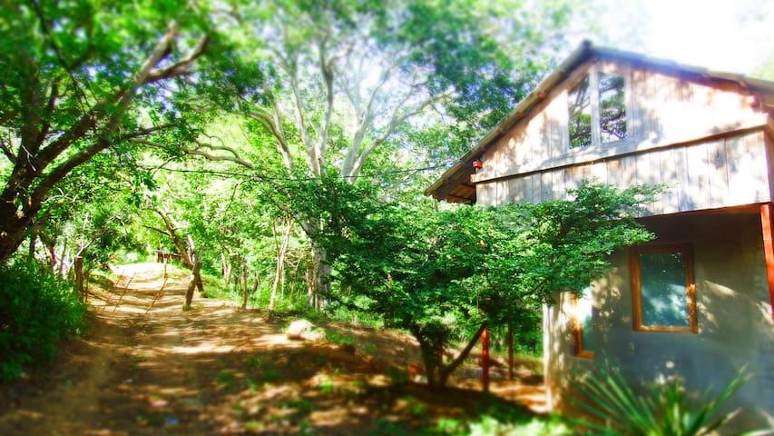 Path going past Casa Abierta
