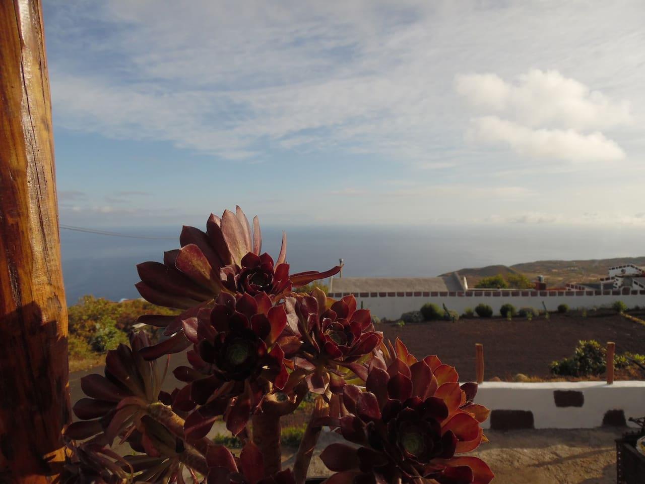 Desde nuestra terraza podrás disfrutar de unas vistas maravillosas del Océano Atlántico con las isla de La Palma al horizonte.