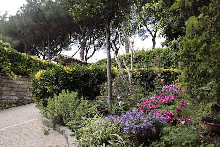 Entire villa with garden Appia Antica.