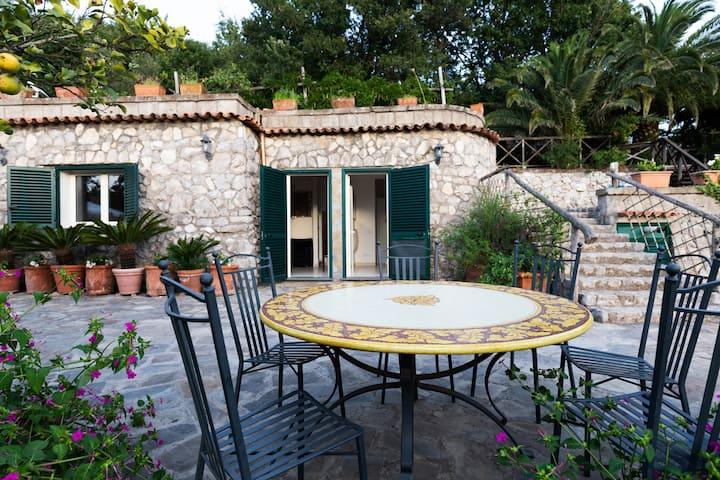 Villa I Limoni con giardino e piscina